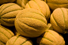 Cantaloupe Melons Stock Images