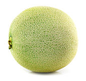 Cantaloupe melons isolated Royalty Free Stock Photography