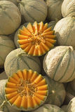 Cantaloupe Melons Ready For Sale On The Market. Stock Images