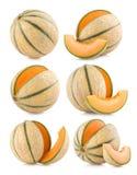 Cantaloupe melons Royalty Free Stock Photography