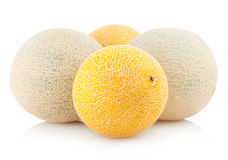 Cantaloupe melons Royalty Free Stock Photos