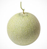 Cantaloupe melons on a white background Stock Images