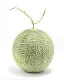 Cantaloupe rock melon Stock Photo