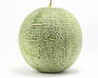 Cantaloupe rock melon. Green cantelope cantaloupe muskmelon mushmelon rockmelon sweet melon honeydew Persian melon spanspek Stock Photos
