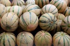 Cantaloupe rock melon muskmelon spanspek Royalty Free Stock Image