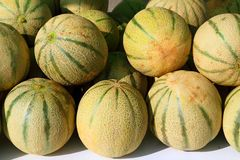 Cantaloupe rock melon muskmelon spanspek Stock Photo