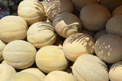 Cantaloupe for sale Stock Images