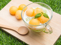 Cantaloupe tapioca Royalty Free Stock Images