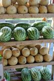 Cantaloupe And Watermelon. On display at farmers' market Stock Images