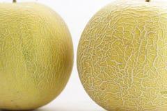 Cantaloupes. Two cantaloups Stock Image