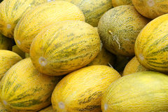 Cantaloupes Royalty Free Stock Photography