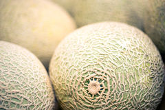 Cantaloupes Closeup Royalty Free Stock Image