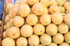 Cantaloupes in the market Royalty Free Stock Photography