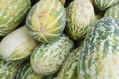 Cantaloupmelonfrukt Arkivfoton