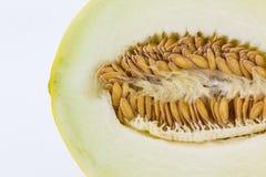 Cantaloupmelonmelon Royaltyfri Bild