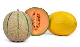 Cantaloupmelonmelon arkivbild