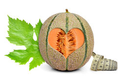 Cantaloupmelonmelon royaltyfria foton