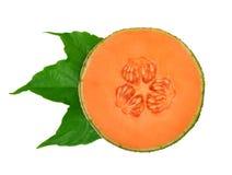 Cantaloupmelonmelon med det gröna bladet royaltyfri foto