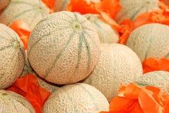Cantaloups Photo stock