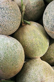 Cantaloups (melon, cantaloup) Photographie stock libre de droits