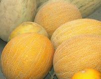 Cantaloups sur un compteur photos libres de droits
