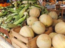Cantalupos e espiga de milho Imagem de Stock