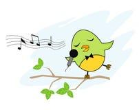 Cantante dell'uccellino Fotografia Stock