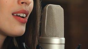 Cantante y micrófono Imagenes de archivo