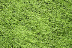 Canted green grass Stock Photography