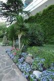 Canteiro de flores com flores pequenas, camas de flor e as plantas decorativas perto da construção do complexo da saúde Fotografia de Stock