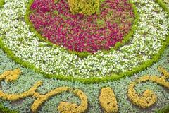 Canteiro de flores curado finamente com as flores brancas, amarelas e cor-de-rosa Fotografia de Stock Royalty Free