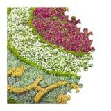 Canteiro de flores curado finamente - imagem do conceito imagens de stock royalty free