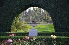 Canteiro de flores das rosas e de um vaso de pedra com flores Fotografia de Stock Royalty Free