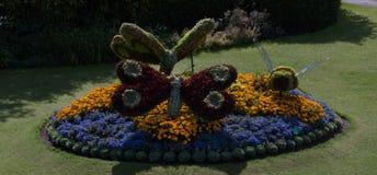 Canteiro de flores decorado Imagens de Stock