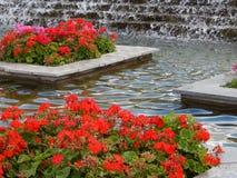 Canteiro de flores do projeto do jardim, ajardinado Foto de Stock Royalty Free