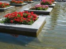 Canteiro de flores do projeto do jardim, ajardinado Fotografia de Stock