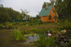 Canteiro de flores na lagoa na fazenda Imagem de Stock Royalty Free