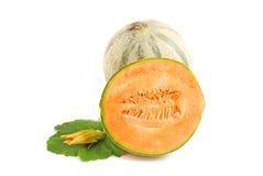 Cantelope melon Arkivfoto