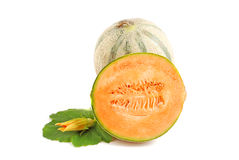 Cantelope melon Zdjęcie Stock