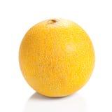 Canteloupe Melon Stock Image