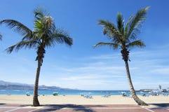 Canteras beach, Las Palmas de Gran Canaria, Spain Royalty Free Stock Images