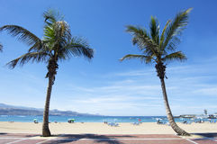 Canteras海滩, Las Palmas de Gran Canaria,西班牙 免版税库存图片