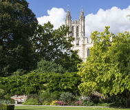 Canterbury Cathedral. View of Canterbury Cathedral in Canterbury Kent England Stock Photos