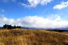 Canterbury-Ebenen, Neuseeland Stockfoto