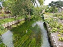 Canterbury-Flusspark Lizenzfreies Stockfoto