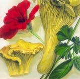 Cantharel met kruiden Stock Illustratie
