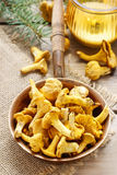 Cantharellus cibarius, commonly known as the chanterelle Stock Images