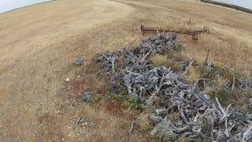 Cantidad aérea de la máquina segador rural de la granja en sequía metrajes