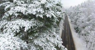 Cantidad aérea del camino del invierno a través del bosque metrajes