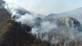 Cantidad aérea del señalado por medio de luces encima del bosque cubierto en humo grueso almacen de video